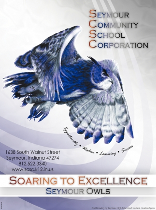 Soaring To Excellence